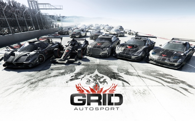 grid_autosport_game-wide2
